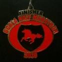Ocala Half Marathon Medal 2010