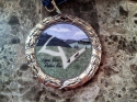 Logan View Raider Run Medal 2012