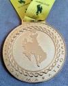 Jackson Hole Half Marathon Medal - 2012