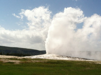 Old Faithful 4
